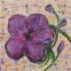 Цвете за вас